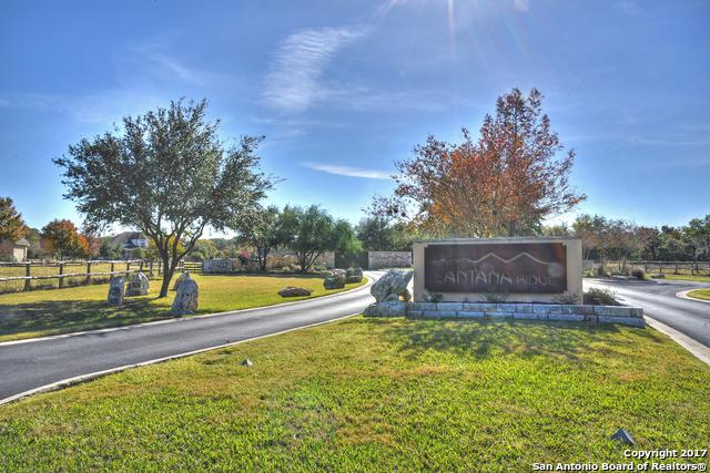 114 Lantana Orr, Spring Branch, TX 78070 (MLS #1280520) :: Exquisite Properties, LLC
