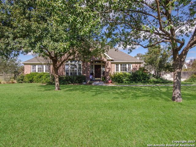 230 Las Brisas Blvd, Seguin, TX 78155 (MLS #1281397) :: Magnolia Realty