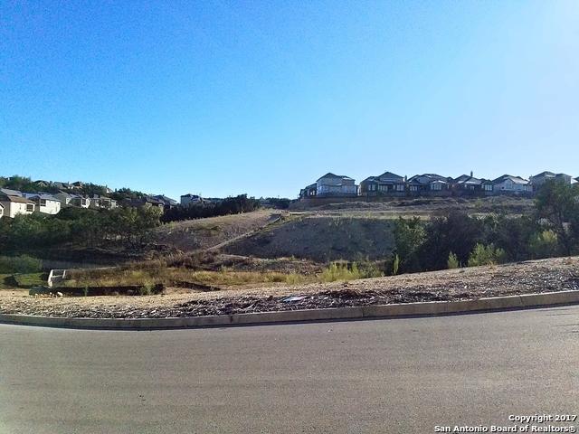 402 Majestic Bluff, San Antonio, TX 78258 (MLS #1282531) :: Exquisite Properties, LLC