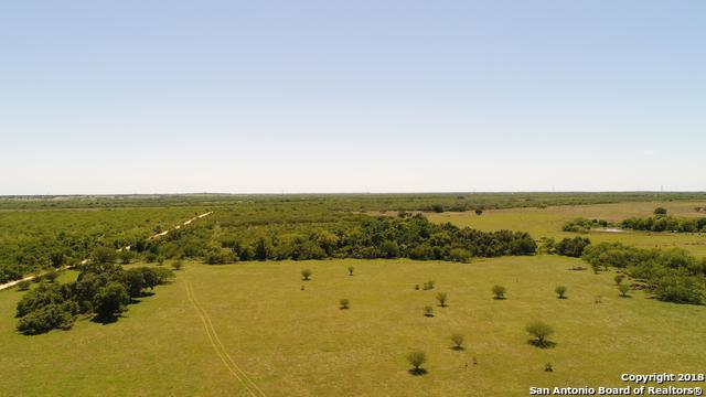 3505 County Road 476, Nixon, TX 78140 (MLS #1282665) :: Ultimate Real Estate Services