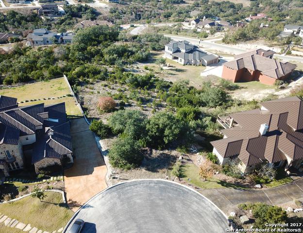 23711 Verona Canyon, San Antonio, TX 78255 (MLS #1283150) :: Tami Price Properties, Inc.