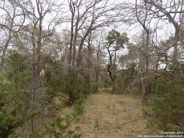LOTS 3 & 4 Latigo Blvd., Pipe Creek, TX 78063 (MLS #1283547) :: Neal & Neal Team