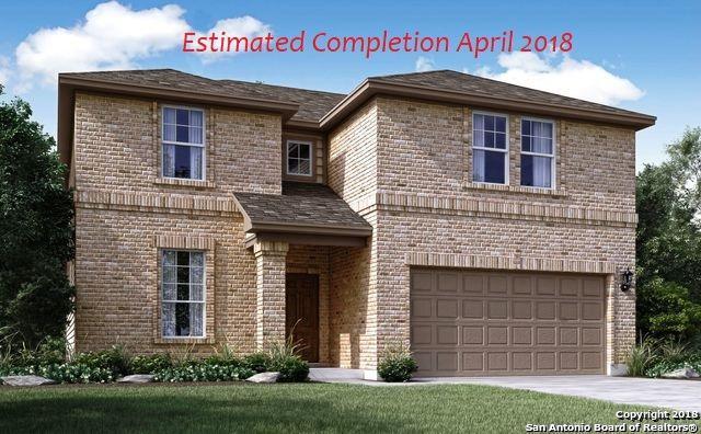 28206 Willis Ranch  Blvd., San Antonio, TX 78260 (MLS #1286436) :: The Castillo Group