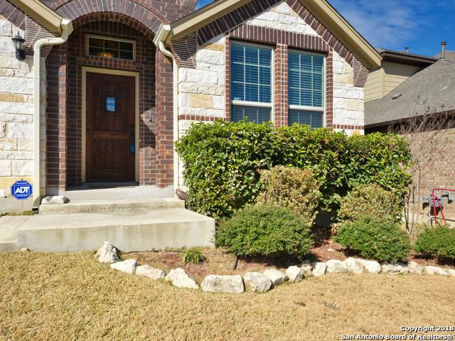 17907 Oxford Mount, Helotes, TX 78023 (MLS #1286952) :: Ultimate Real Estate Services
