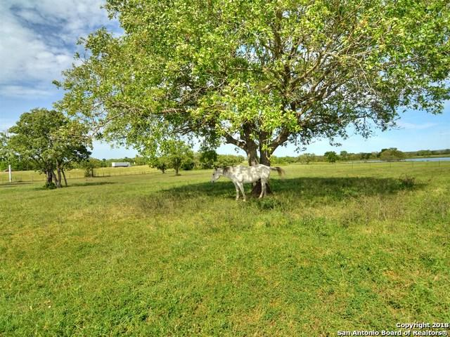 456 Cr 413 B, Waelder, TX 78959 (MLS #1288771) :: The Castillo Group