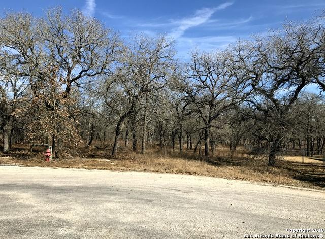 588 Jacobs Ln, La Vernia, TX 78121 (MLS #1289191) :: Alexis Weigand Real Estate Group