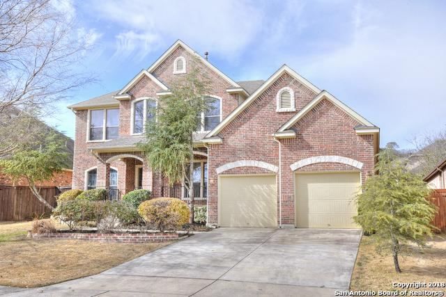 21619 Granada Hill, San Antonio, TX 78256 (MLS #1289840) :: The Castillo Group