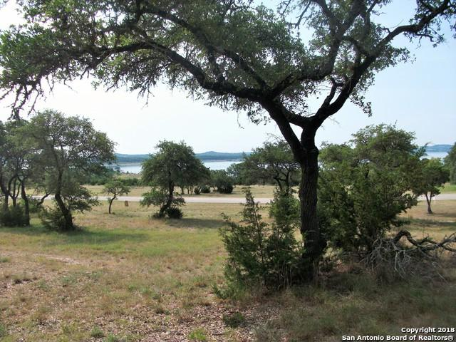 1157 Brads Flight, Canyon Lake, TX 78133 (MLS #1290078) :: BHGRE HomeCity