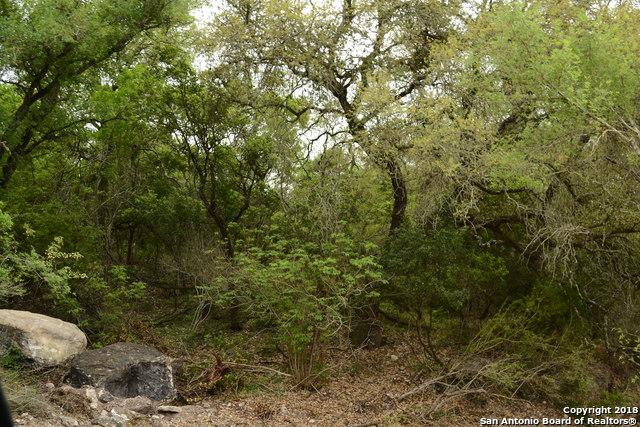 LOT 2 County Rd 473, Castroville, TX 78009 (MLS #1290185) :: Alexis Weigand Real Estate Group