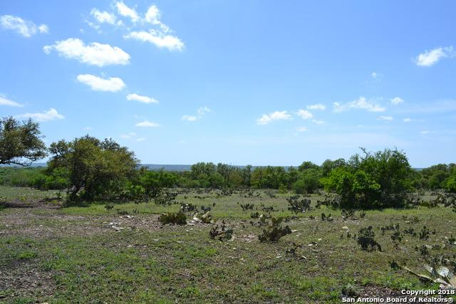 TRACT 10 County Rd 473, Castroville, TX 78009 (MLS #1290314) :: Alexis Weigand Real Estate Group