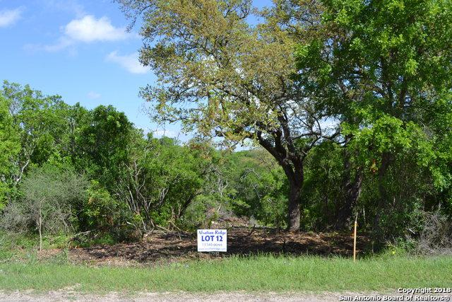 TRACT 12 County Rd 473, Castroville, TX 78009 (MLS #1290318) :: Alexis Weigand Real Estate Group
