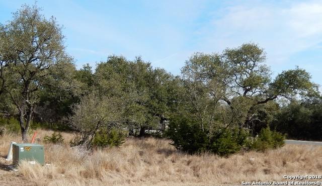 103 Cuero, San Antonio, TX 78260 (MLS #1291661) :: The Castillo Group