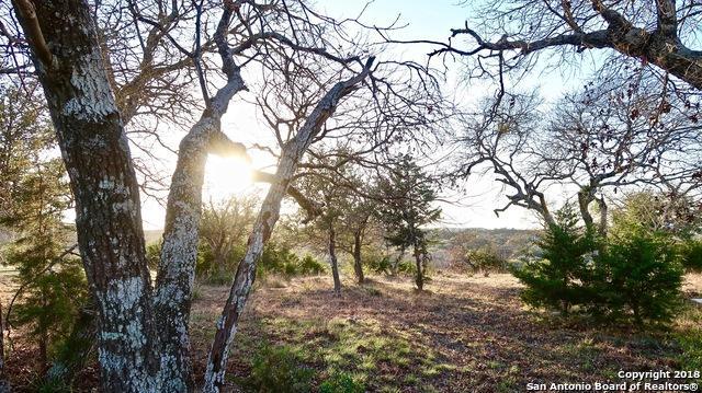 143 Miller Springs - Photo 1