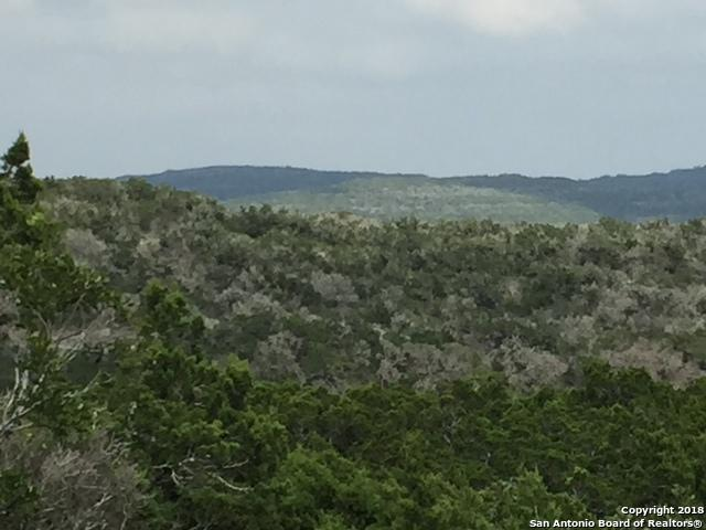 CR 270 Cr 270, Mico, TX 78056 (MLS #1295259) :: The Castillo Group