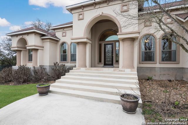 828 Oak Bluff Trail, New Braunfels, TX 78132 (MLS #1297568) :: Magnolia Realty