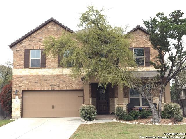 28302 Willis Ranch, San Antonio, TX 78260 (MLS #1298304) :: The Castillo Group