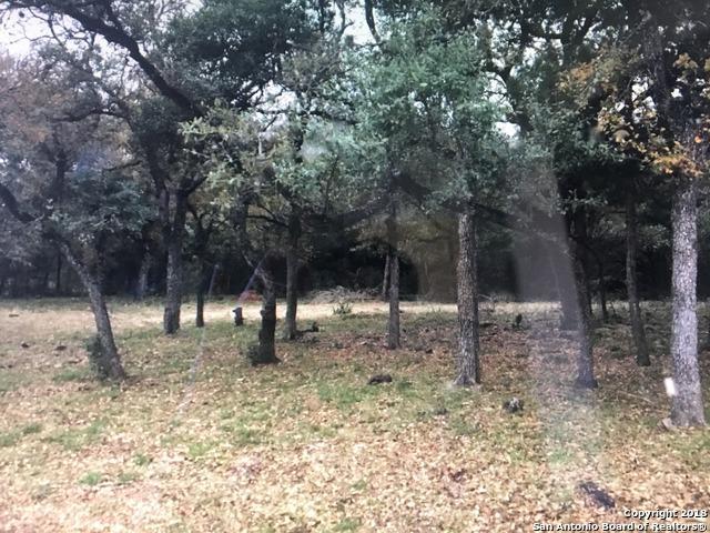 8303 Wild Wind Park, Garden Ridge, TX 78266 (MLS #1298604) :: Ultimate Real Estate Services