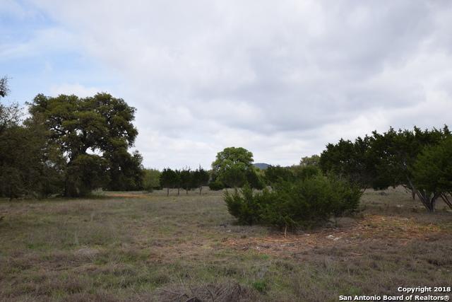 LOT 16 X Rio Azule, Pipe Creek, TX 78063 (MLS #1298958) :: Magnolia Realty
