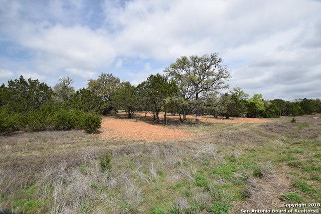 LOT 10 X Rio Azule, Pipe Creek, TX 78063 (MLS #1299005) :: Magnolia Realty