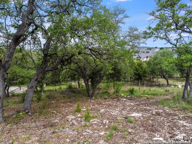 25424 Fairway View, San Antonio, TX 78260 (MLS #1304215) :: The Castillo Group