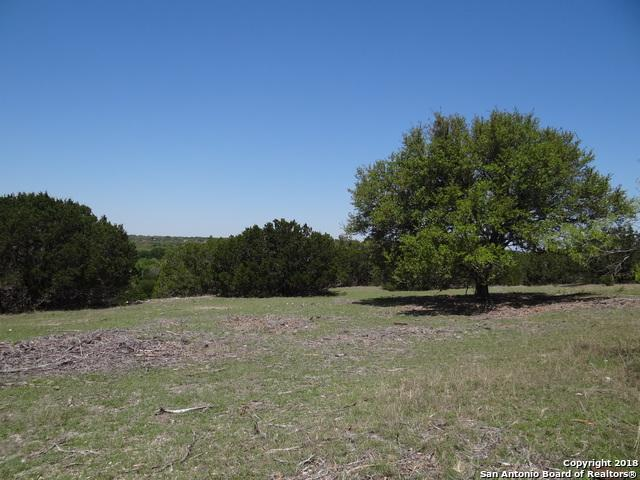 9 Schumann Rd., Stonewall, TX 78671 (MLS #1305457) :: Alexis Weigand Real Estate Group