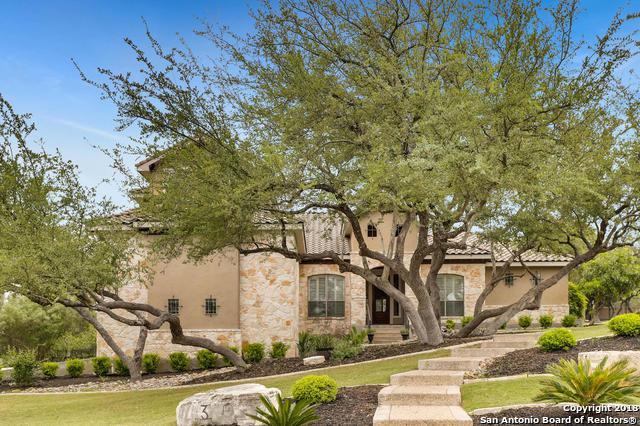 3 Caleb Circle, San Antonio, TX 78258 (MLS #1305849) :: Exquisite Properties, LLC