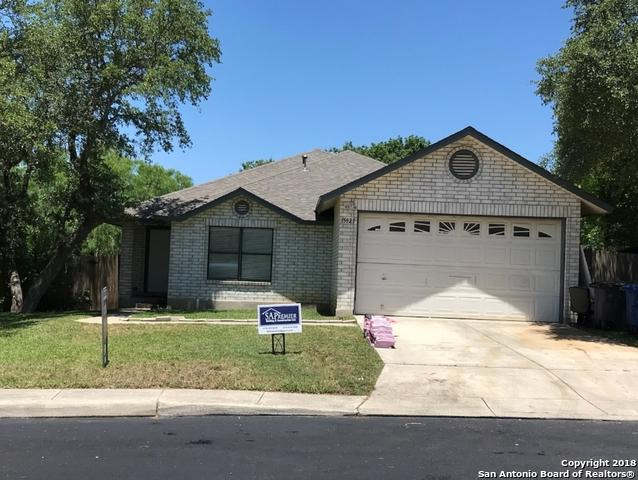15927 Kenna Mist, San Antonio, TX 78247 (MLS #1307922) :: Erin Caraway Group