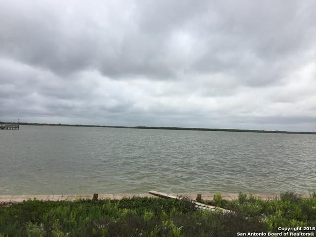 1037 E County Road2350, Riviera, TX 78379 (MLS #1310959) :: Alexis Weigand Real Estate Group