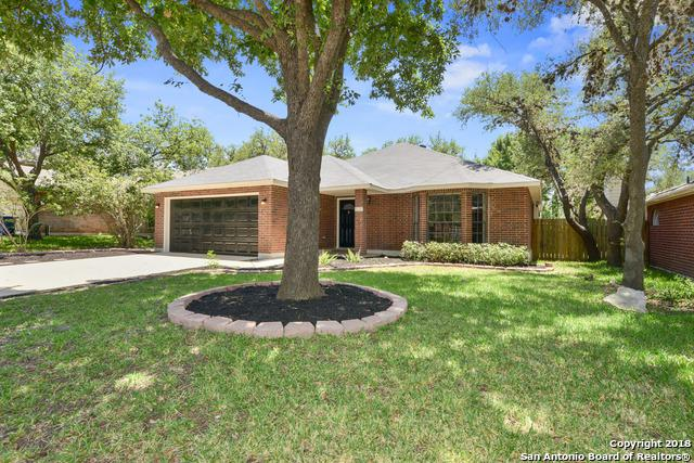8530 Timber Place Dr, San Antonio, TX 78250 (MLS #1311034) :: Exquisite Properties, LLC