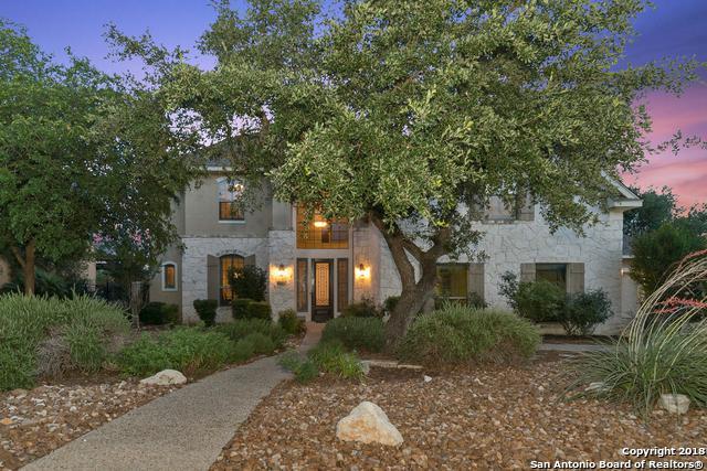 3202 Ivory Creek, San Antonio, TX 78258 (MLS #1313968) :: The Castillo Group