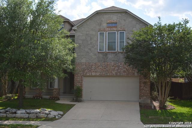 26131 Lookout Falls, San Antonio, TX 78260 (MLS #1314312) :: Exquisite Properties, LLC