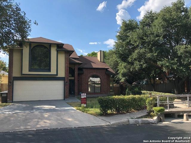 14015 Quarles St, San Antonio, TX 78247 (MLS #1314405) :: The Castillo Group