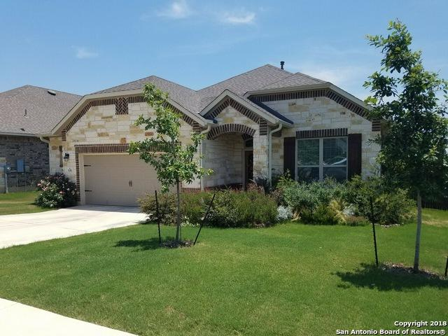 1181 Creek Canyon, New Braunfels, TX 78132 (MLS #1314483) :: Alexis Weigand Real Estate Group