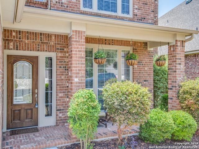 27230 Trinity Bend, San Antonio, TX 78261 (MLS #1316988) :: Alexis Weigand Real Estate Group
