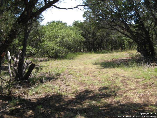 LOT 76 County Road 2473, Hondo, TX 78861 (MLS #1317034) :: Alexis Weigand Real Estate Group