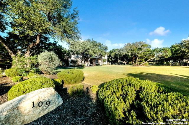 109 Fall Springs, Boerne, TX 78006 (MLS #1317699) :: Exquisite Properties, LLC