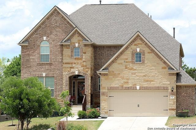 25919 Avellino Bluff, San Antonio, TX 78261 (MLS #1318997) :: NewHomePrograms.com LLC