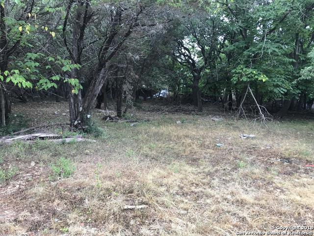 255 Oakridge St, Canyon Lake, TX 78133 (MLS #1320182) :: Erin Caraway Group