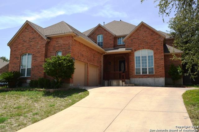 26003 Torena Loop, San Antonio, TX 78261 (MLS #1320999) :: NewHomePrograms.com LLC