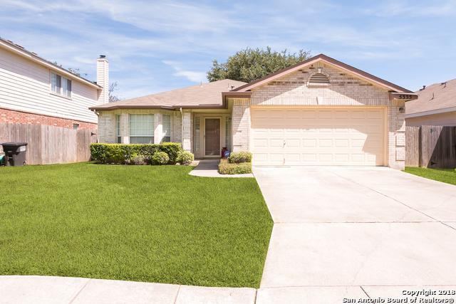 5335 Stormy Autumn, San Antonio, TX 78247 (MLS #1322916) :: Alexis Weigand Real Estate Group