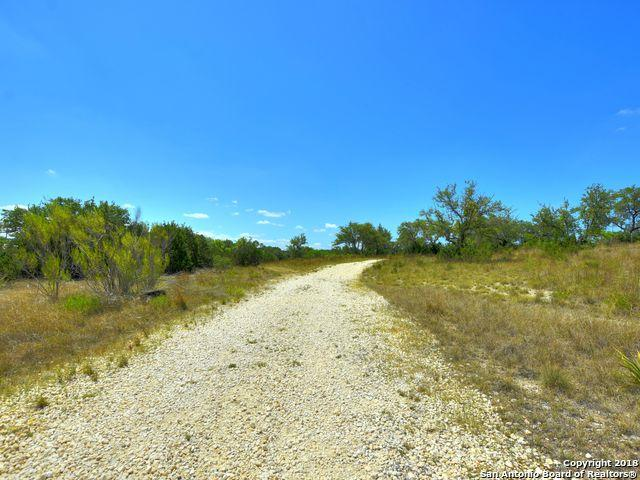 321 Friday Mountain Ranch Rd, Johnson City, TX 78636 (MLS #1323949) :: ForSaleSanAntonioHomes.com