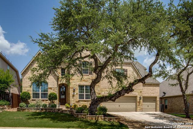 25810 Raven Ridge, San Antonio, TX 78255 (MLS #1325279) :: The Castillo Group
