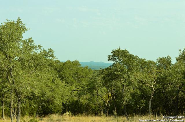 175 Player Ridge, Spring Branch, TX 78070 (MLS #1325446) :: The Castillo Group