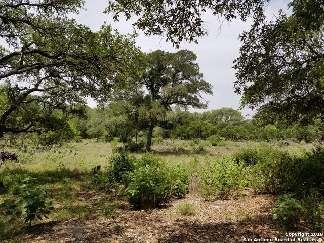 525 Oak Village Dr, San Antonio, TX 78253 (MLS #1325638) :: Tami Price Properties Group