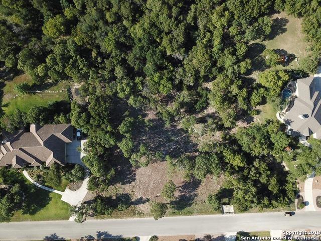 116 Fair Springs, Boerne, TX 78006 (MLS #1325993) :: Alexis Weigand Real Estate Group