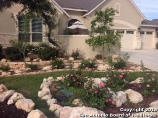 29018 Carstens Ridge, San Antonio, TX 78260 (MLS #1326485) :: The Castillo Group