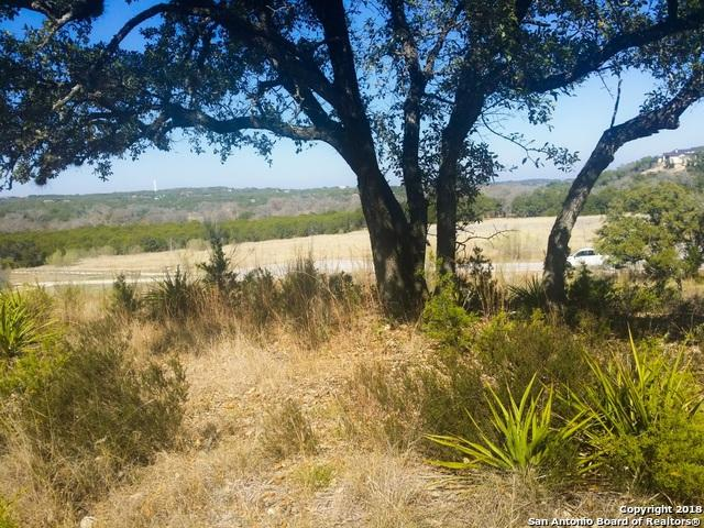 2100 Bella Vista, Canyon Lake, TX 78133 (MLS #1326902) :: Carolina Garcia Real Estate Group