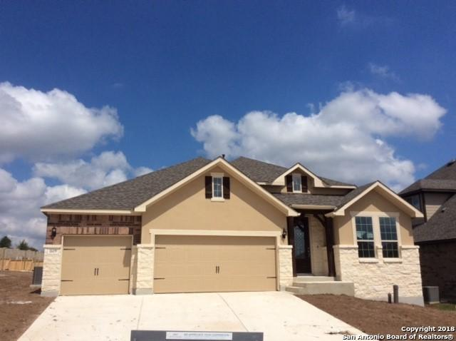 1619 Snowy Owl, San Antonio, TX 78245 (MLS #1328058) :: Exquisite Properties, LLC