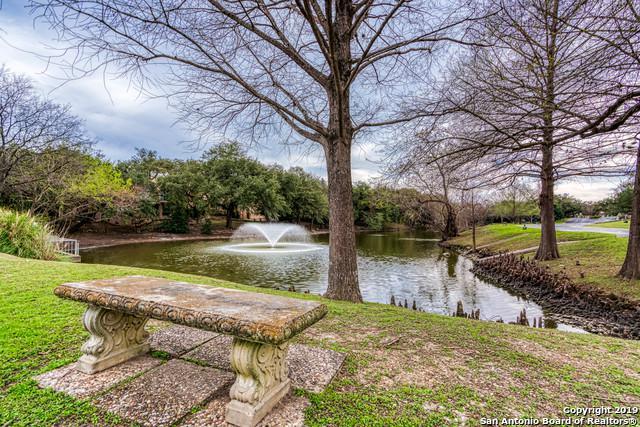 11732 Caprock St, San Antonio, TX 78230 (MLS #1328570) :: Alexis Weigand Real Estate Group
