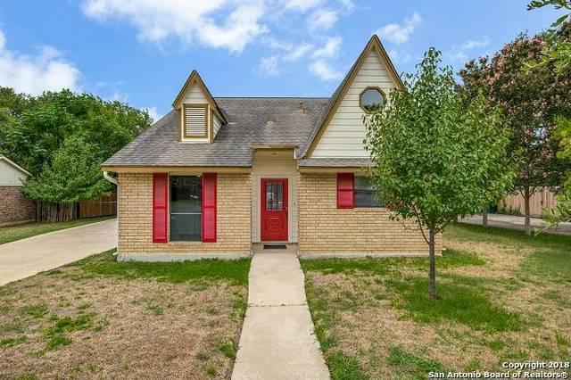 134 Oak Grove Dr, Boerne, TX 78006 (MLS #1330306) :: Magnolia Realty